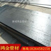 【鸿金】供应输送机衬板现货 输送机耐磨衬板价格 耐磨叶片加工