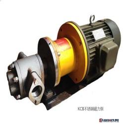 耐腐蚀不锈钢齿轮泵 不锈钢齿轮泵 耐腐蚀齿轮泵 耐腐蚀不锈钢齿轮泵图片