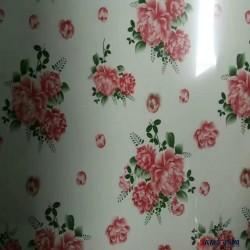 天津销售镀铝锌彩涂板卷DX51D+AZ 加工瓦楞板 镀铝锌彩涂卷板图片