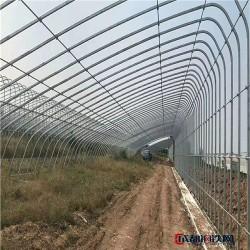 橢圓管廠 河北橢圓管 平橢圓管 鍍鋅橢圓管 北京橢圓管 山東鍍鋅帶橢圓管 熱鍍鋅橢圓管圖片