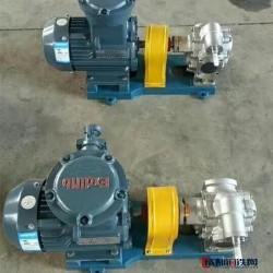 沧州永盛 KCB不锈钢齿轮泵 不锈钢齿轮泵 齿轮泵厂家 高温泵图片