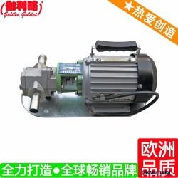 上海微型齿轮泵齿轮 上海cb不锈钢齿轮泵 伽伍图片